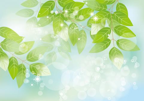 Glittering leaves & sky 29