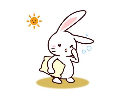 Usagi (Good morning)