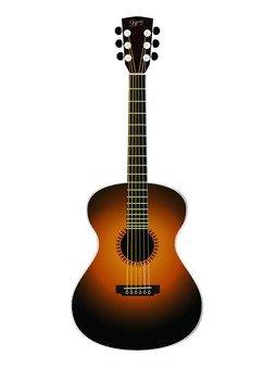 Gut · Guitar