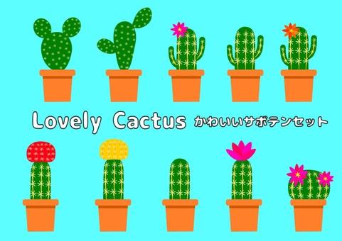 Cactus various set