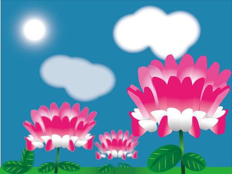 하루를받는 연꽃 1600 × 1200px