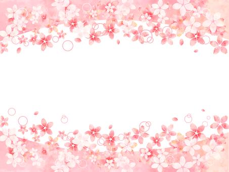 벚꽃의 프레임 (상하)