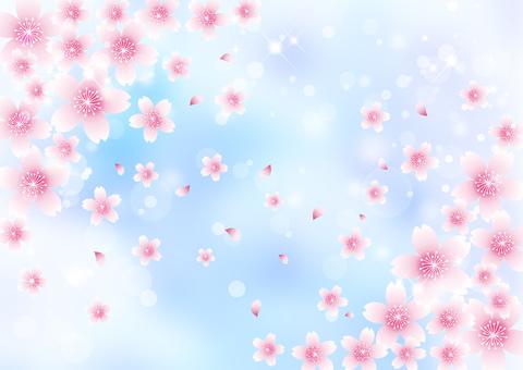 Sakura _ sky _ background