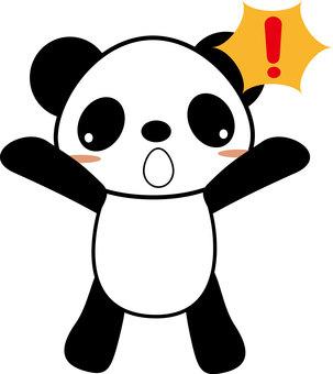 Amazing panda