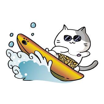 Surfing cat ③