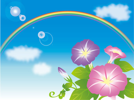 Blue sky, morning glory and rainbow