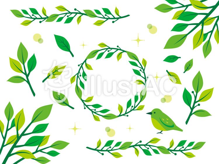 植物イラスト素材2イラスト No 436887無料イラストなら