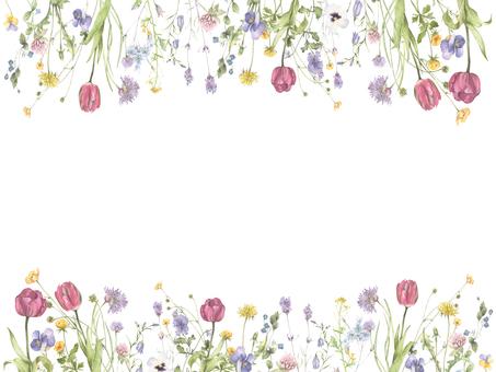 花框240  - 總之可愛的花框