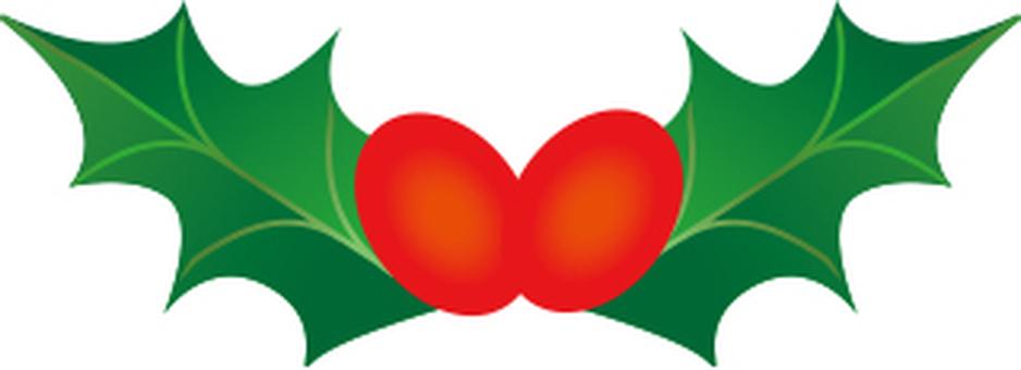 히 이라기의 열매