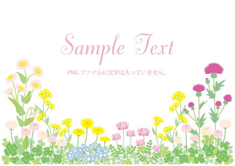 봄 들꽃 프레임 02