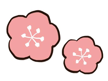 Momoflower