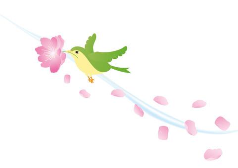 복숭아 꽃과 새들의 2