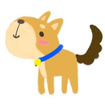 站在棕色的狗