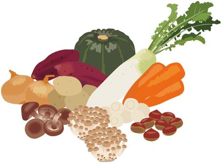 Taste of autumn _ vegetables