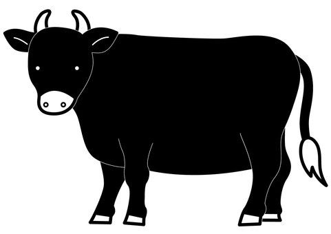 母牛2-1c