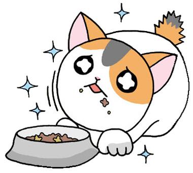 밥이 맛있는 고양이
