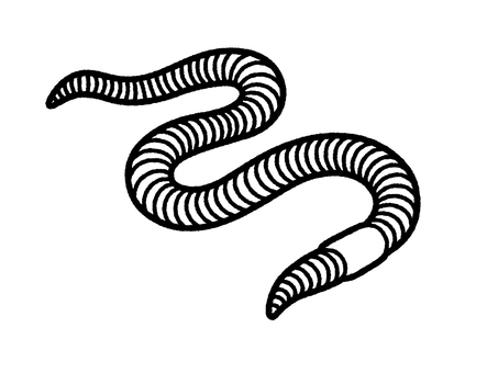 Earthworm (line only)