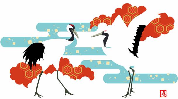 Crowned Crane 3