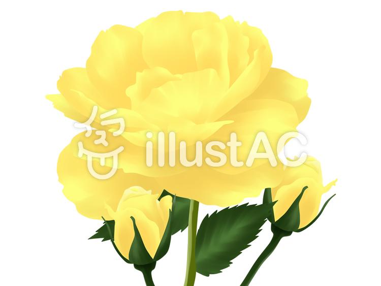 【フリーイラスト素材】黄色いバラ・1