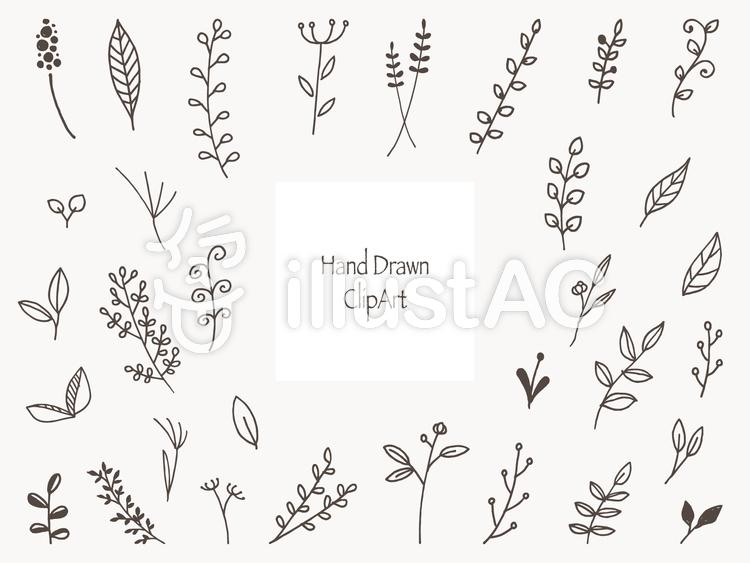手書きのかわいい花と草の挿し絵セットイラスト No 無料イラストなら イラストac