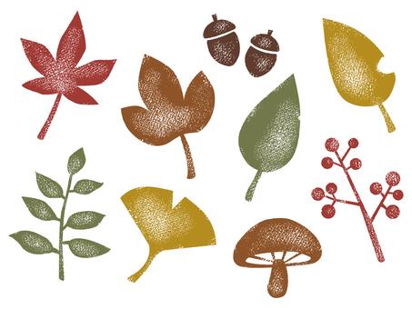 Autumn plant 001
