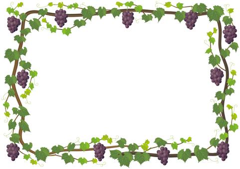 Vine tree _ frame