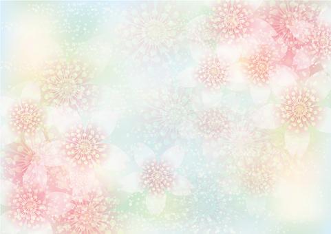벚꽃의 꽃 147