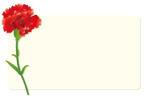 Carnation message card