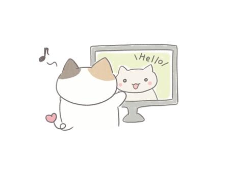 Calico cat receiving online education