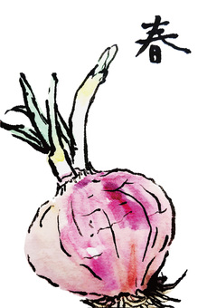 Red onion picture letter