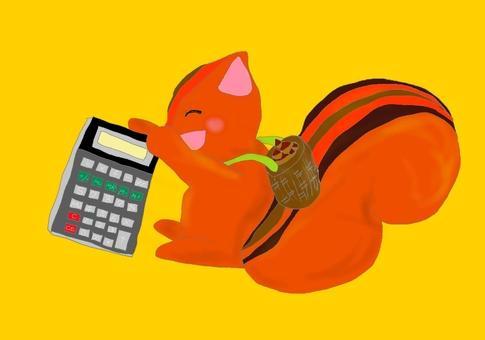 다람쥐의 계산