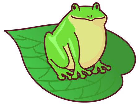 葉っぱに乗ったカエル