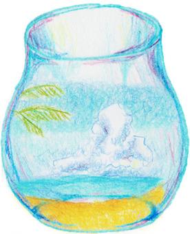 Bottle of Hawaii
