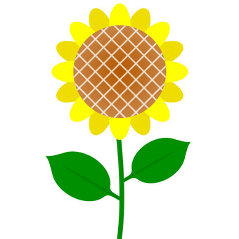 Flower · Sunflower