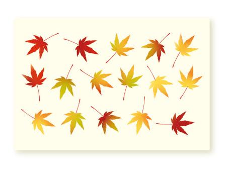 일본식 수채화 오오모미지 엽서 크기입니다