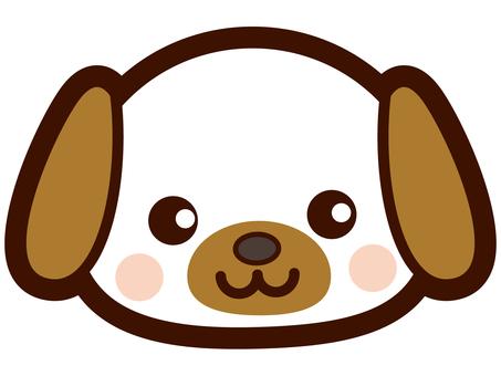 귀여운 강아지 얼굴