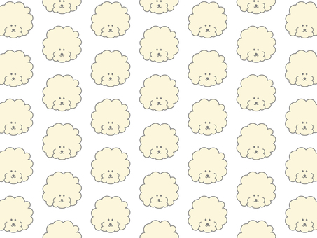 Toy poodle background material