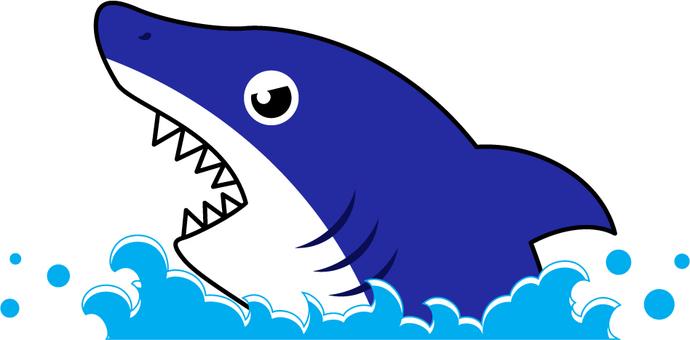 Shark_Shark
