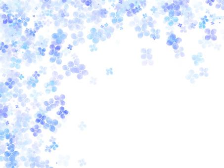 Hydrangea frame ver 02