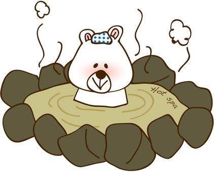 Hot spring bear