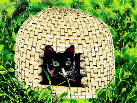 A cat litter