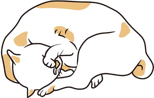 고양이 그 32