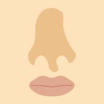 Nose (bent nose)