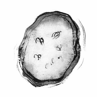 Cucumber slice hand drawn ink