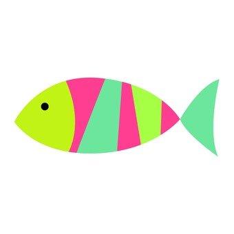 화려한 물고기 1