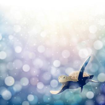 きらめく海を泳ぐ海亀
