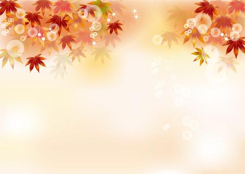 Autumn leaves 161
