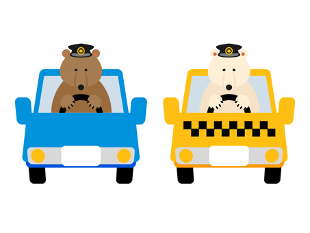Bear's driver