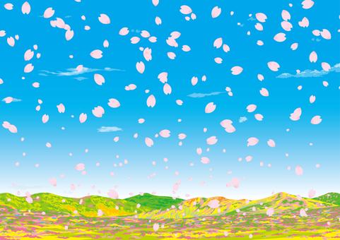 봄의 야산 벚꽃 꽃 보라 고원 구릉 벽지