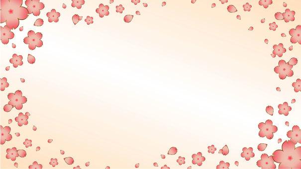 桜 style and wind 2Back1